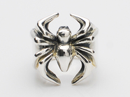 GANG SPIDER RING